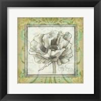 Victorian Poppy II Framed Print