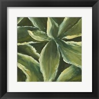 Hosta Detail I Framed Print