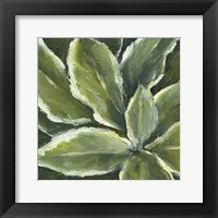 Framed Hosta Detail II