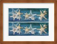 Framed 2-Up Starfish