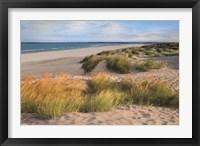 Framed Sandy Shores