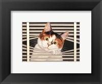 Framed Sassy Lara