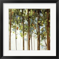 Framed Forest Study III