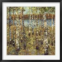 Framed Purple Birch