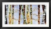 Framed Bark Abstract