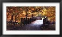 Framed Autumn Overpass-Special