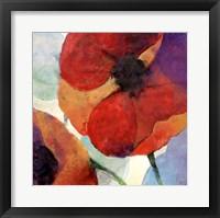 Framed Poppy III