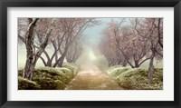 Framed Blossom Path