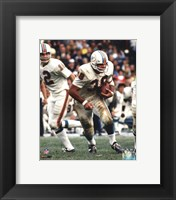 Framed Larry Csonka Action