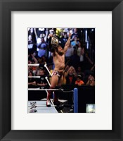Framed Daniel Bryan with Championship Belt 2013 Summer Slam