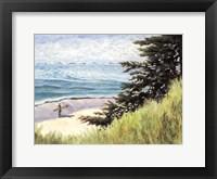 Framed Seacliff Beach