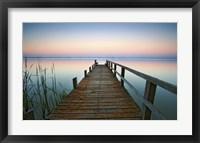 Framed Lake Kangaroo