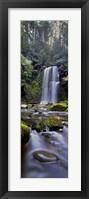 Framed Beauchamp Falls Vert I