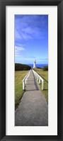 Framed Cape Otway