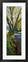 Framed Snowy Creek Vert