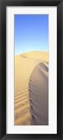 Framed Mungo Dune Vert