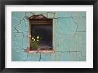 Framed Window 3