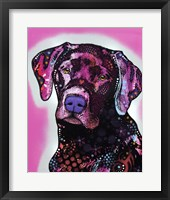 Framed Black Lab