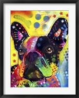 Framed French Bulldog 2