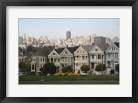 Framed Painted Ladies San Franciso 1