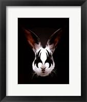 Rabbit Rocks Framed Print