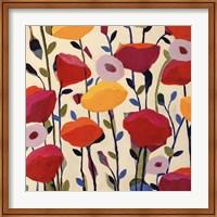 Framed Bursting Poppies
