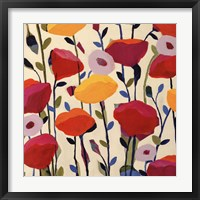 Framed Bursting Poppies