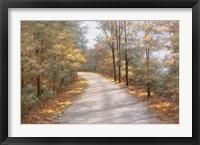 Framed Walking in Fall