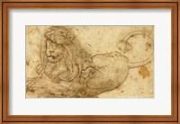 Framed Study of a Lion