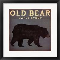 Framed Old Bear