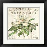 Framed Magnolia de Printemps