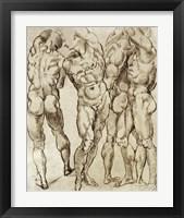 Framed Nude Studies