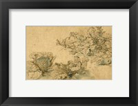 Framed Studies of a Marrow Plant and Cabbages