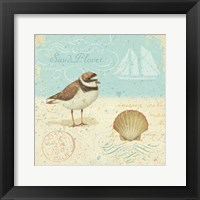 Framed Natural Seashore I