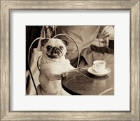 Framed Cafe Pug