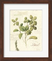 Framed Aromatique III