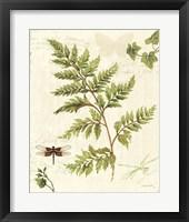 Framed Ivies and Ferns I