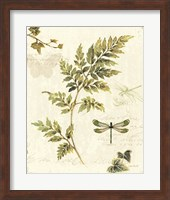 Framed Ivies and Ferns III