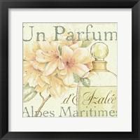 Framed Fleurs and Parfum III