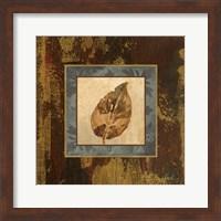 Framed Autumn Leaf Square III