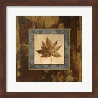 Framed Autumn Leaf Square IV