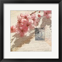 Vintage Letters and Cherry Blossoms Framed Print