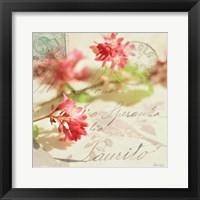 Vintage Letters and Pink Blossoms Framed Print