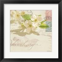 Vintage Letter and Apple Blossoms Framed Print