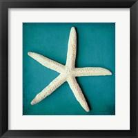 Framed Sea Star II
