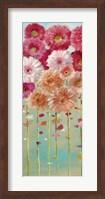 Framed Daisies Spring I
