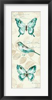 Framed Wing Prints II