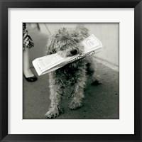 Framed Paris Dog II