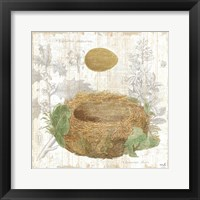 Botanical Nest IV Framed Print