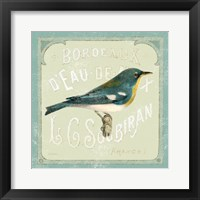 Framed Parisian Bird I